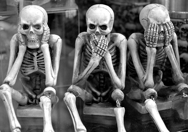 skeletons-3639984_640